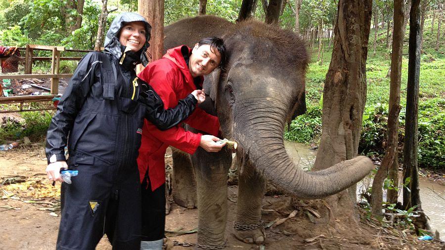 elefanten-fuettern-thailand