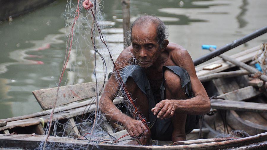 alter-fischer