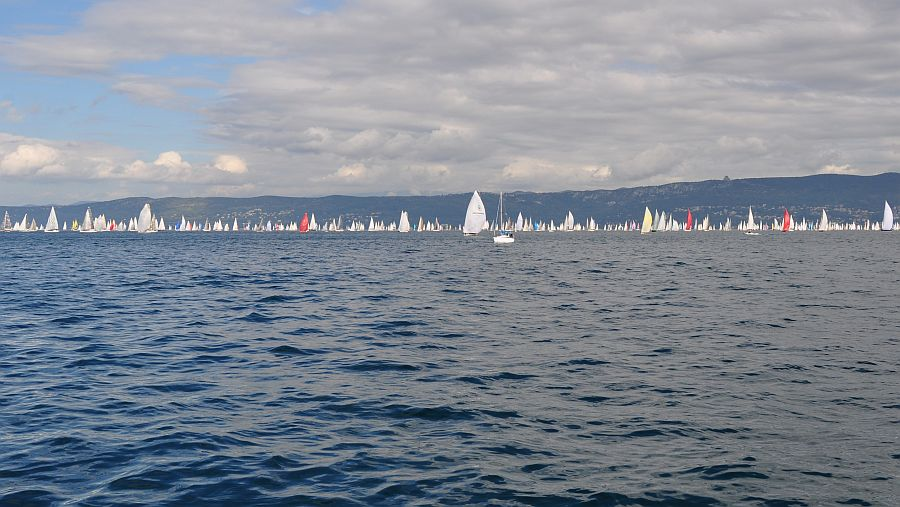 barcolana-regatta-triest-2013