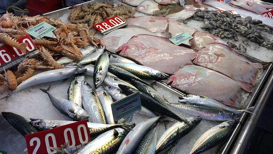 venedig-fischmarkt-erkunden