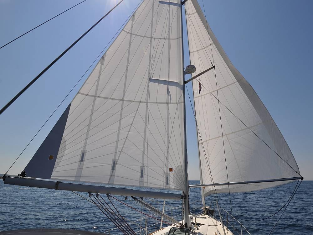 schmetterling-segeln