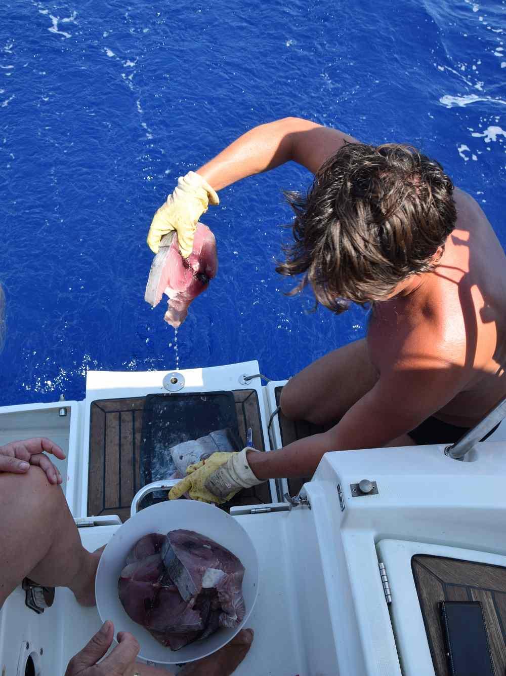 thunfisch-steak-schneiden