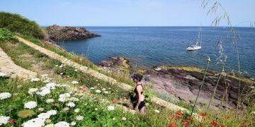 Rund um Sardinien segeln